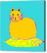 Background Colour Choice Saffron Cat Acrylic Print
