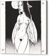 Backlit Acrylic Print by Richard Moore