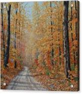 Backroads Acrylic Print