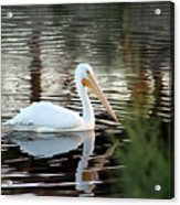 Backwater Serenity Photograph Acrylic Print