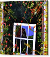 Backyard Window Acrylic Print