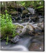 Badger Creek #2 Acrylic Print