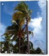 Bahamian Breeze Acrylic Print