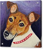Bailey Terrier Mix Acrylic Print
