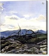 Baker Dam Colorado Acrylic Print