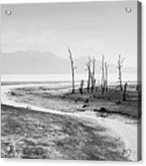 Bako National Park At Low Tide. Acrylic Print