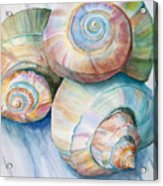 Balance In Spirals Watercolor Painting Acrylic Print