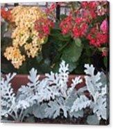 Balcony Garden Acrylic Print