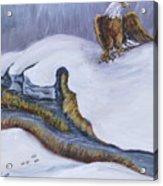 Bald Eagle On Snowdrift Wildlife Vignette Acrylic Print