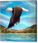 Bald Eagle Shuswap Rhapsody Acrylic Print