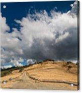 Bald Hills In Summer 2 Acrylic Print