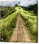 Bali Landscape 4 Acrylic Print
