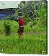 Balinese Lady Carrying Pot Acrylic Print