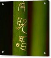 Bamboo 02 Acrylic Print