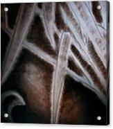 Bamboo Abstract Acrylic Print