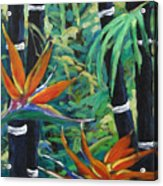 Bamboo And Birds Of Paradise Acrylic Print