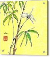 Bamboo And Dragonfly Acrylic Print