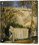 Bamboo And Herb Garden Acrylic Print