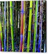 Bamboo Dreams #13 Acrylic Print
