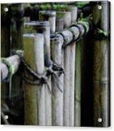 Bamboo Fence Acrylic Print by Samantha Kimble