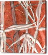 Golden Bamboo Acrylic Print