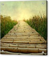 Bamboo Path In Grass At Sunrise Acrylic Print