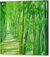 Bamboo Paths Acrylic Print