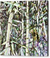 Bamboo Sprouts Forest Acrylic Print