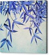 Bamboo Susurration Acrylic Print by Priska Wettstein