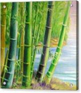 Bamboo Variegations Acrylic Print