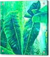 Banan Leaves 5 Acrylic Print