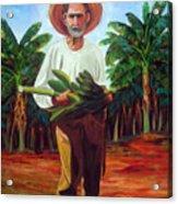 Banana Farmer Acrylic Print