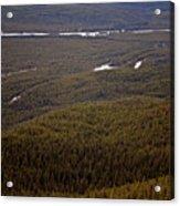 Banff National Park Forest Acrylic Print