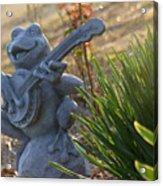 Banjo Playin' Bull Frog Acrylic Print