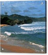 Barbados Berach Acrylic Print