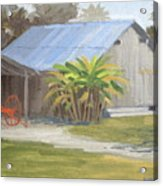 Barberville Barn Acrylic Print