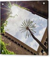 Barcelona Courtyard With Palm Tree Acrylic Print