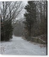 Bare Cove Park In A Snowstorm Acrylic Print