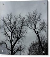 Bare, Raw, Cold Winter Day  Acrylic Print