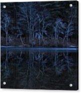Bare Trees Reflected Acrylic Print