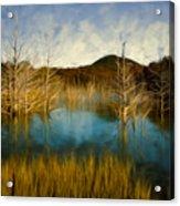 Bare Waters Acrylic Print