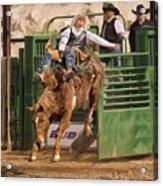 Bareback Riding At The Wickenburg Senior Pro Rodeo Acrylic Print