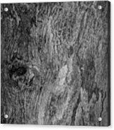 Bark At The Moon Acrylic Print
