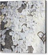 Bark With Heart Acrylic Print