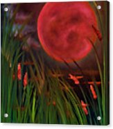 Barley Spike Moon Acrylic Print