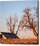 Barn At Sunrise Acrylic Print