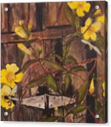 Barn Door Hinge Acrylic Print