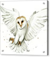Barn Owl Flying Watercolor Acrylic Print