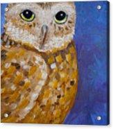 Barn Owl- Impressionism- Owl By Night Acrylic Print