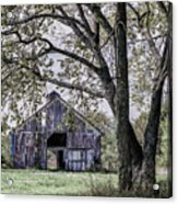 Barn Underneath The Tree Acrylic Print